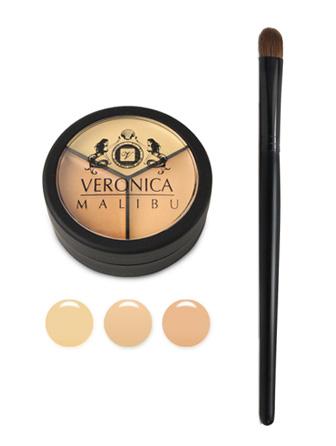 Pro Palette Concealer & Concealer Brush